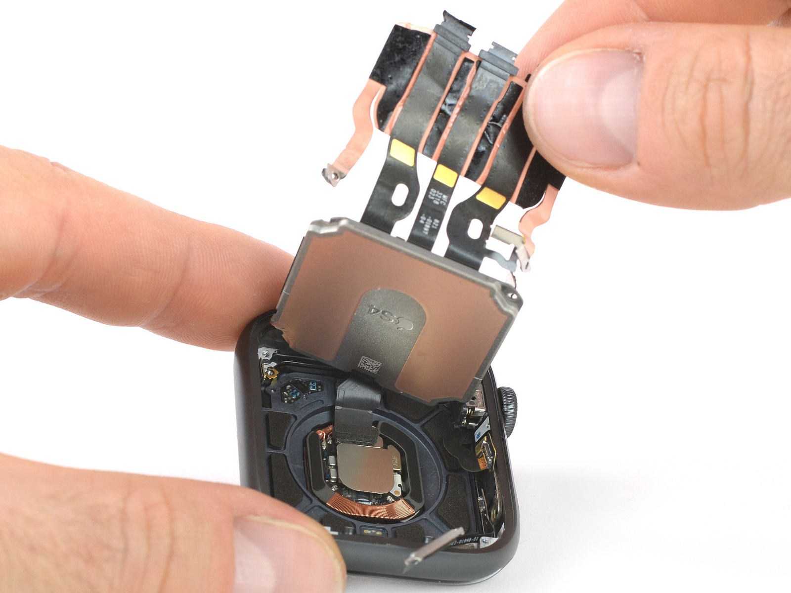 Les entrailles de l'Apple Watch 4 dévoilent quelques changements par rapport à la Series 3 1