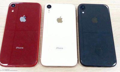 Des coloris supplémentaires pour l'iPhone X LCD ? 15