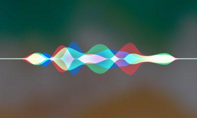 Des nouveautés en quantité pour Siri version iOS 13 5