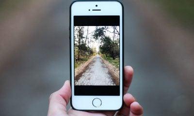 Une photographe amateur gagne un concours photo grâce à son iPhone… 6 ! 2