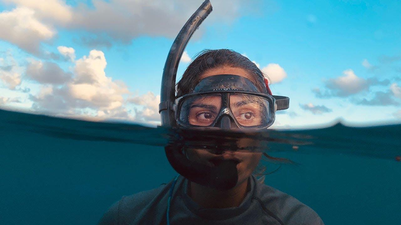 L'iPhone XS en apnée parmi les requins (vidéo) 1