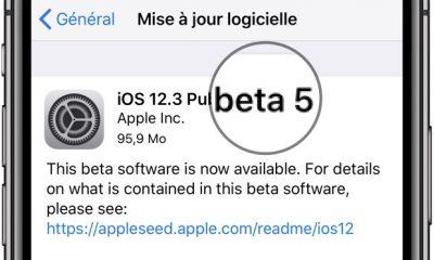 La Bêta 5 d'iOS 12.3 est disponible sur iPhone et iPad (dév et publique), avec les bêta de tvOS, watchOS et MacOS 23