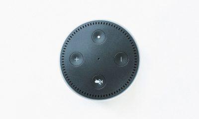 Amazon confirme : Alexa stocke les voix de ses utilisateurs sans limite de temps 21