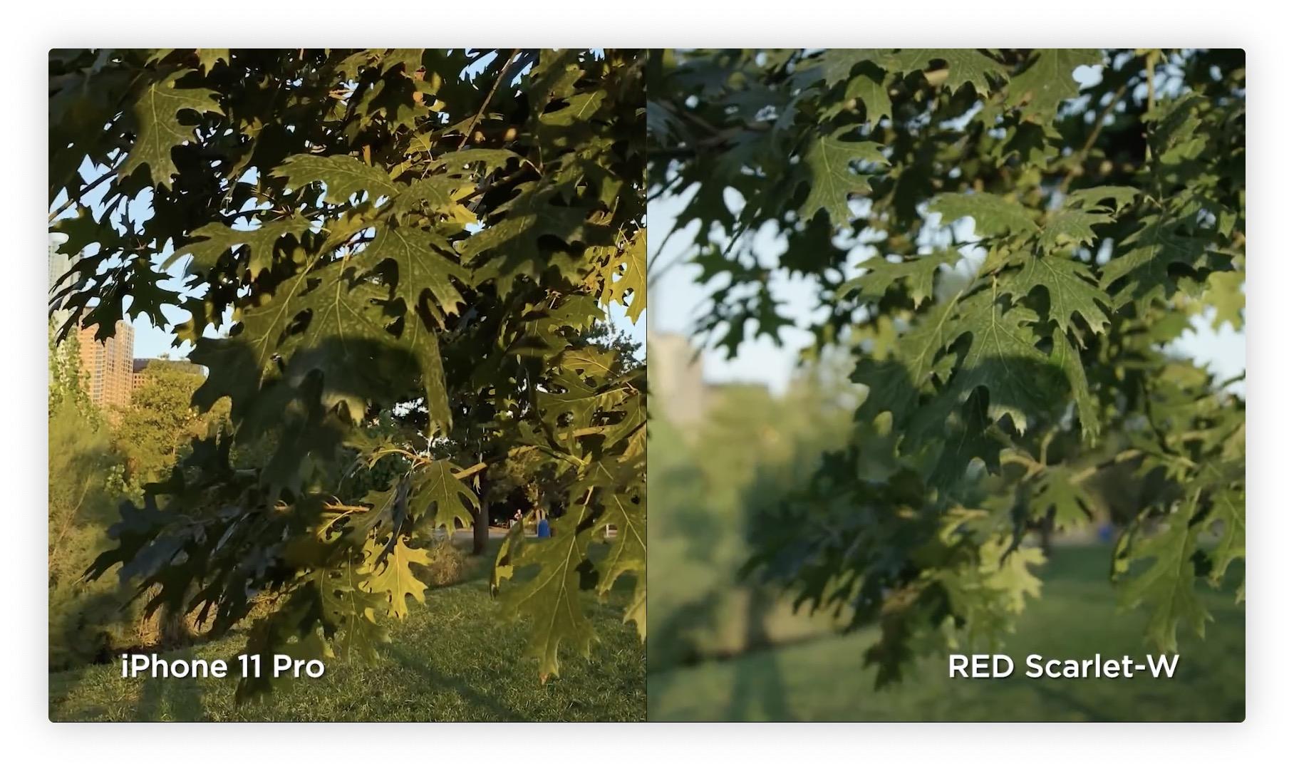 Vidéo: l'iPhone 11 Pro comparé à une caméra RED à 10k dollars 5