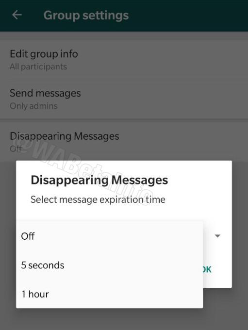 WhatsApp Messenger Android messages éphémères