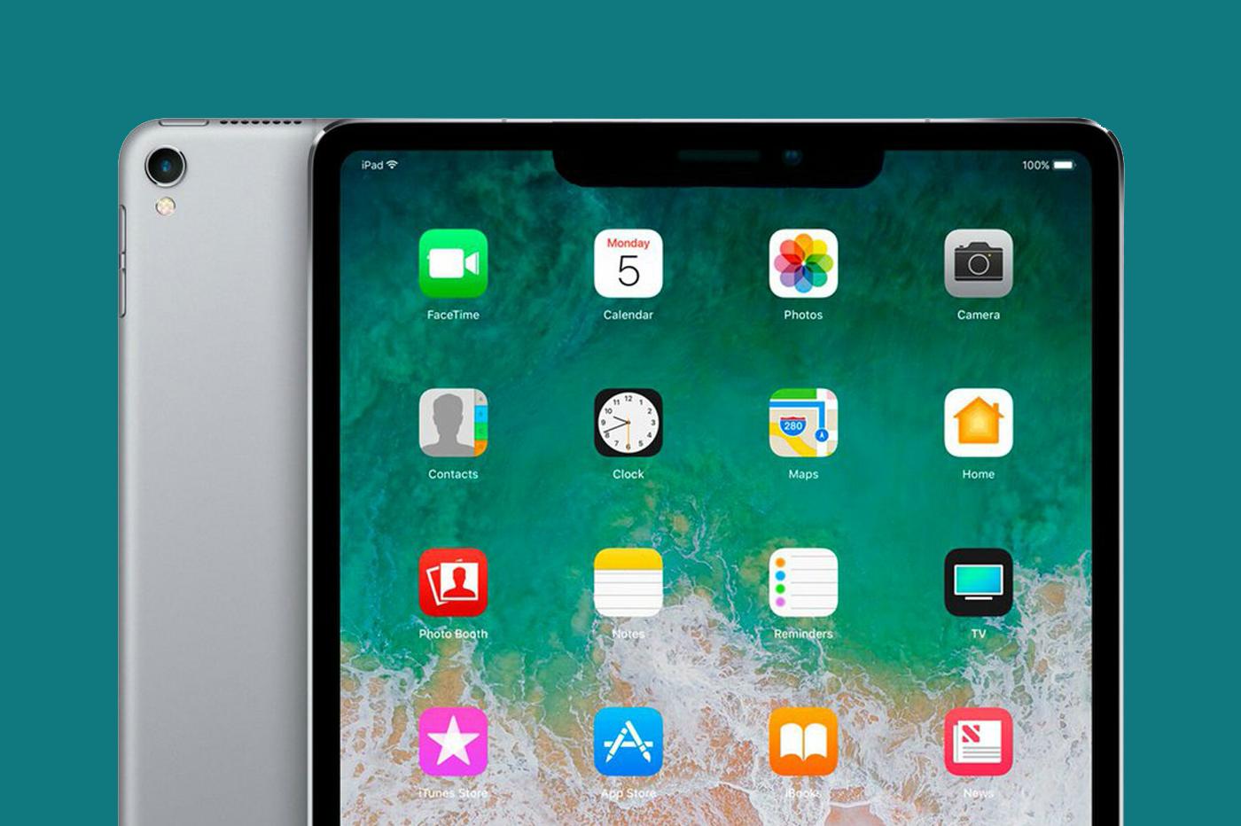 iPad notch