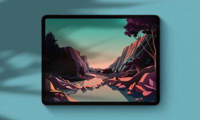 Fonds d'écran iOS 14.2 sur iPad