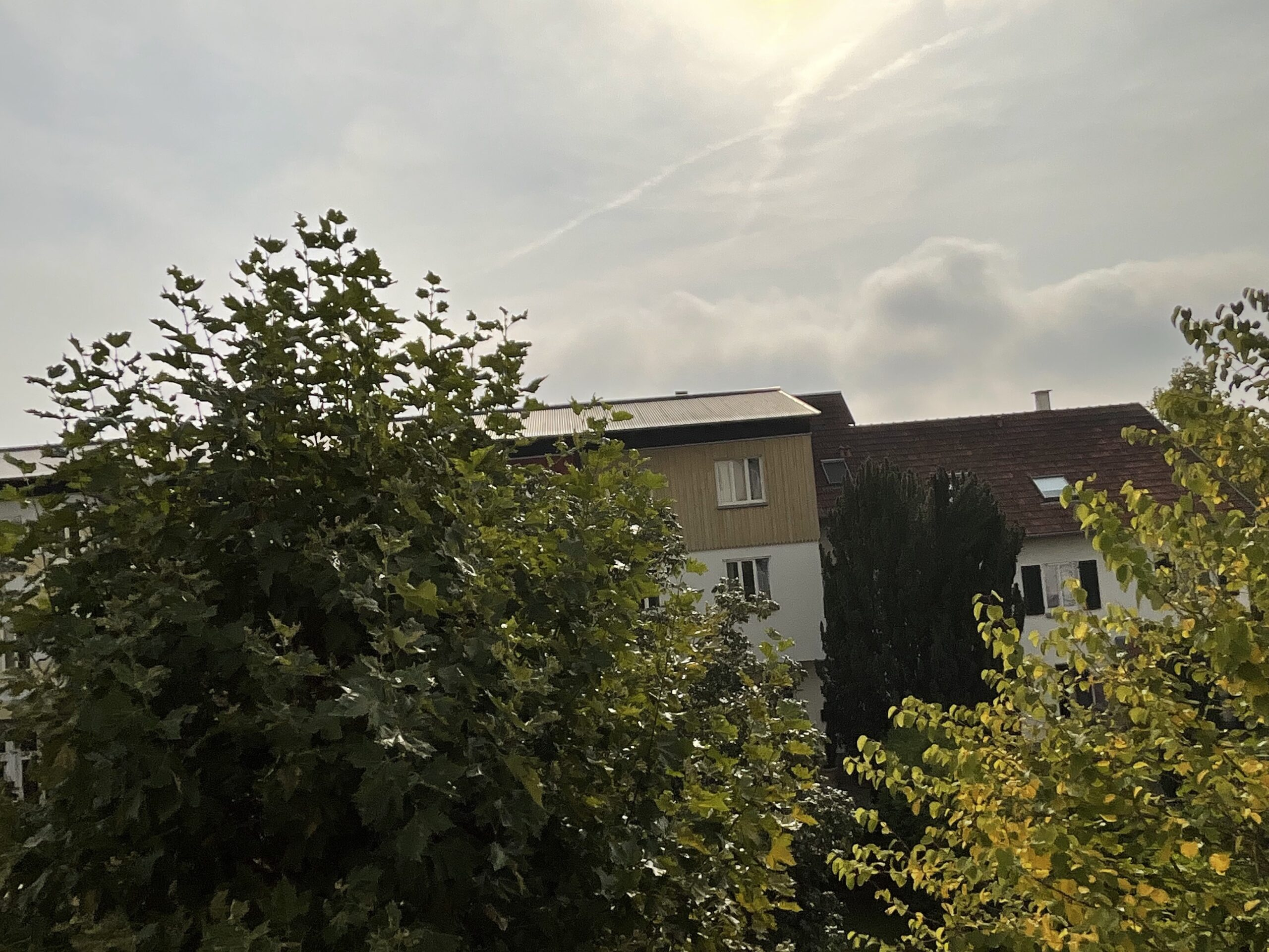 iPad mini 6 caméra avant photo maisons