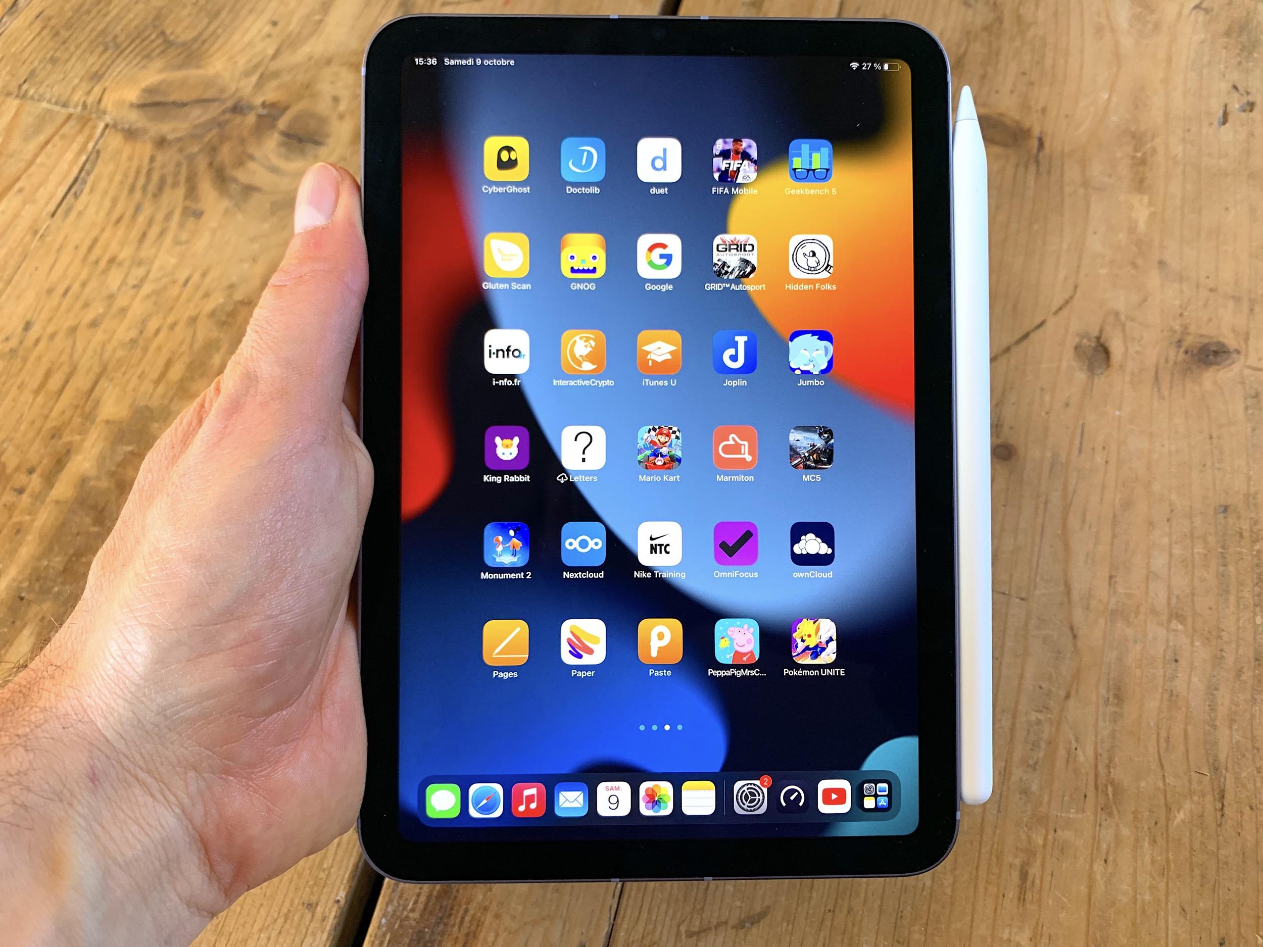 iPad mini 6 vue Pencil Portrait