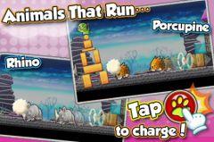 free iPhone app Animal Crash