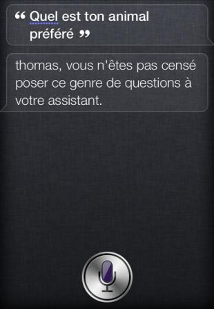 humour-siri-iphone-4s-15.jpg