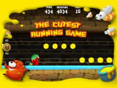 free iPhone app Bear Run