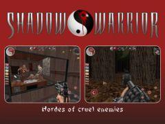 free iPhone app Shadow Warrior