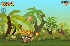 free iPhone app Noogra Nuts