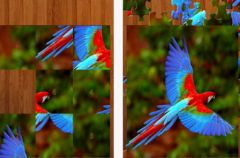 free iPhone app Bird Jigsaw