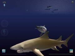 free iPhone app Shark Eaters