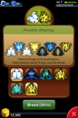 Pocket_Frogs_04.jpg