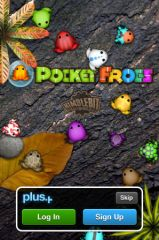 Pocket_Frogs_06.jpg