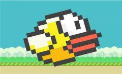 flappy-1.jpg