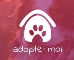 Adopte moi : une app iOS pour adopter son animal de