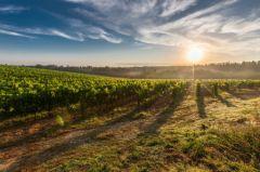 Au Danemark, Apple crée un data center ultra renouvelable lié aux fermes et habitations