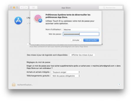 faille-preferences-app-store-mac.jpg