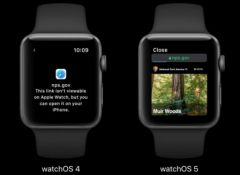 watchos-5-pages-web-1.jpg