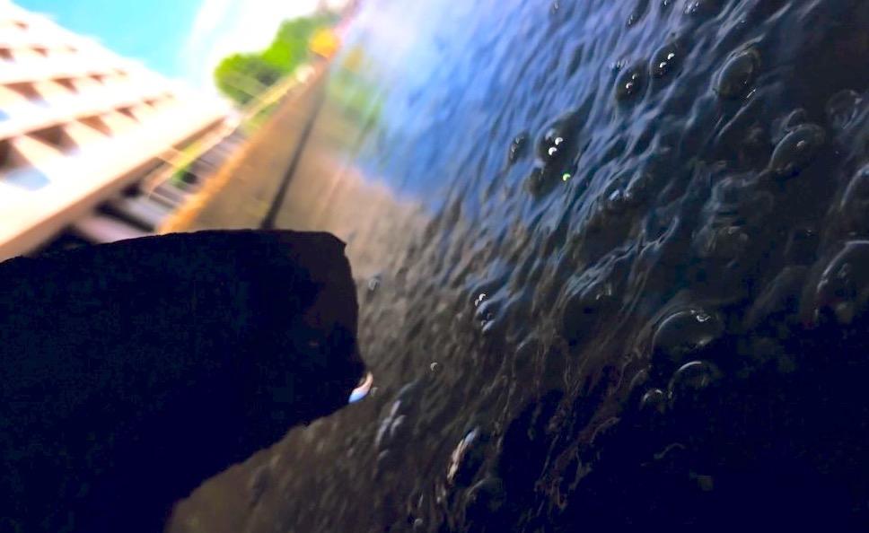 coque sous l eau iphone x