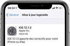 8dd7577346 Mises à jour disponibles   iOS 12.1.3 pour iPhone et iPad ainsi que ...