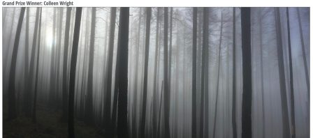 Une photographe amateur gagne un concours photo grâce à son iPhone… 6! 2